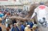 الطلبة التجمعيين والمرأة التجمعية بجهة بني ملال خنيفرة يناقشون عيد الأضحى المبارك في زمن كورونا