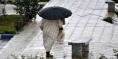 انخفاض نسبي في درجات الحرارة وزخات مطرية في بعض المناطق المغربية -نشرة جوية-