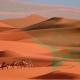 انسحاب الوفد الجزائري بسبب خريطة المغرب… ويستمر النظام الجزائري في الركض وراء السراب!