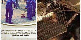 فيديو صادم لشبان يقدمون قطة لكلاب شرسة وحاكم دبي يعاقبهم بتنظيف حديقة الحيوانات=فيديو=