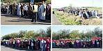 بعد 8 أيام من الاعتصام المفتوح أمام مشروع تربية الدواجن ، أولاد سي بلغيث ينقلون اعتصامهم إلى أمام مقر الولاية