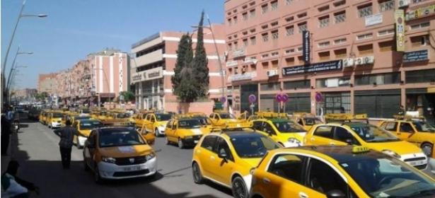 وزارة النقل تُصدر بلاغ هام لمهنيي النقل من أجل تجديد سياراتهم