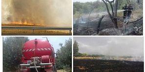 ردوا لبال مع لحرارة… النيران تأكل محصول أراضي زراعية في مناطق متفرقة – الصور + فيديوهات-