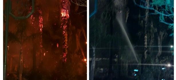عاجل… اندلاع حريق بالحديقة المجاورة لبلدية قصبة تادلة و النيران تلتهم اشجار نخيل-الصور-