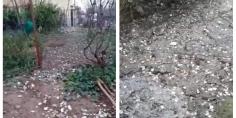 بالفيديو… روائح وفضلات واد الحار السجن المحلي لبني ملال يُخرج الساكنة المجاورة للاحتجاح