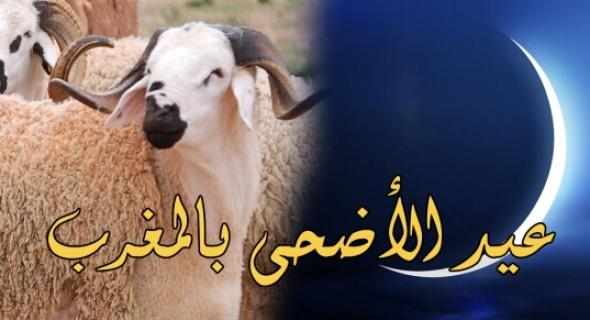 عااجل…عيد الأضحى بالمغرب يوم 12 شتنبر