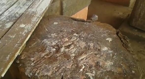 فيديو خطير…تاكسي نيوز تقتحم سوق أولاد موسى وتنقل لكم وضعيته الصادمة وأماكن بيع اللحوم المقززة
