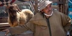 واقعة سوق الحي الحسني .. الشجـرة التي تخـفي غـابـة انـدحار القـيـم