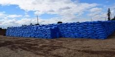 برمجة 650 ألف هكتار لزراعة الحبوب الخريفية بجهة بني ملال خنيفرة