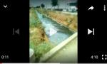 فيديو مثير… مواطن عميري يوجه أول نداء للقرناشي العامل الجديد للفقيه بن صالح ويفضح فيه كارثة بيئية تسببها شركة للحليب