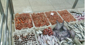 كلوه غانتوما ودرويش ليه الله… تقرير يفضح مافيات تتحكم في سوق الأسماك وتتسبب في ارتفاع غير معقول في أثمنتها