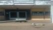 من لباب يبان لعربون… صورة كلاب ضالة أمام مستوصف صحي بالبرادية تعكس الواقع المرير لصحة البرداويين