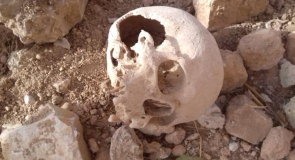 جمجمة بشرية ببقعة قيد البناء تستنفر الدرك الملكي لأزيلال -فيديو وصورة حصرية-